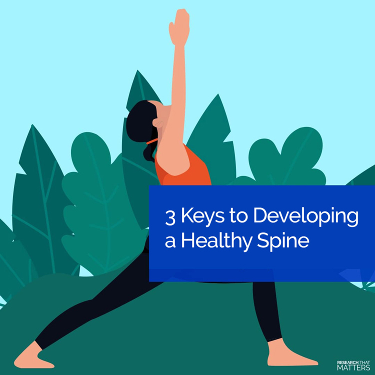 Developing A Healthy Spine in Novato CA